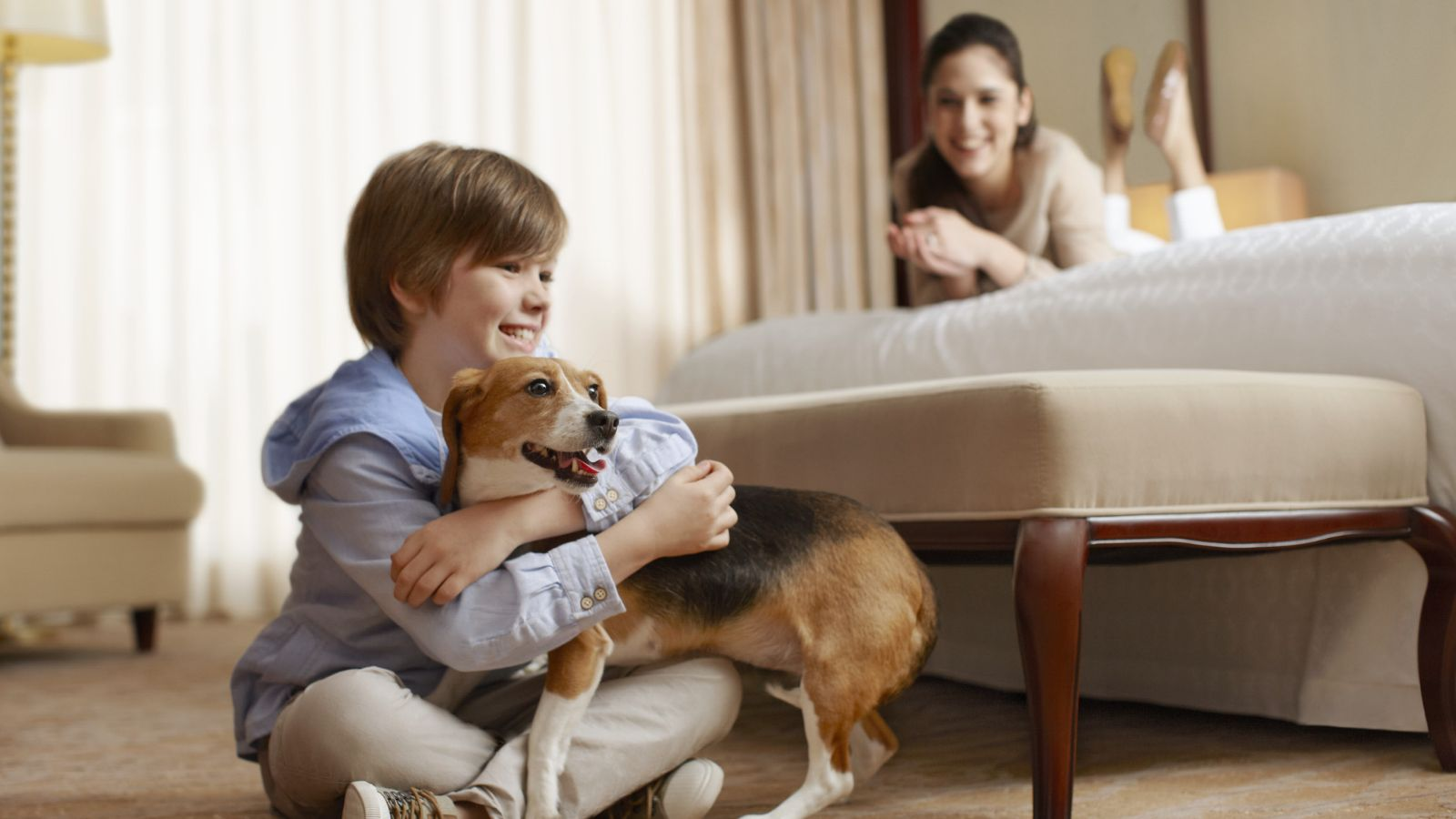 Pet friendly Hotel atlanta